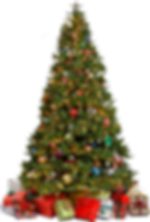 Christmas-Tree-Transparent-Background.pn