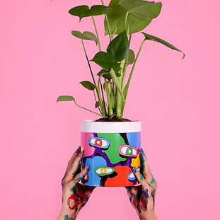 Poppy Poppy flowerpot, bold graphic illustrations