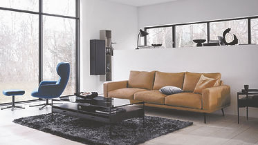 BoConcept Bellevue Reno chair and Carlton sofa