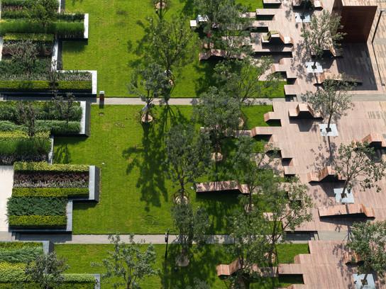 Five Questions for: Landscape Architect Martha Schwartz