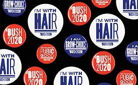 SCHER_Bush Buttons.jpg