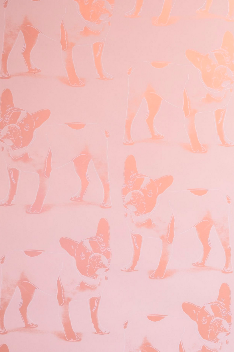 Brooklyn-based wallcovering design company Flavor Paper has added a new handscreened pattern to its exclusive Andy Warhol x Flavor Paper collection.  The new design is a rendering of Yves Saint Laurent's French bulldog, Moujik, which Warhol had once portrayed via a multi-colored and layered screenprint, shown in pink.