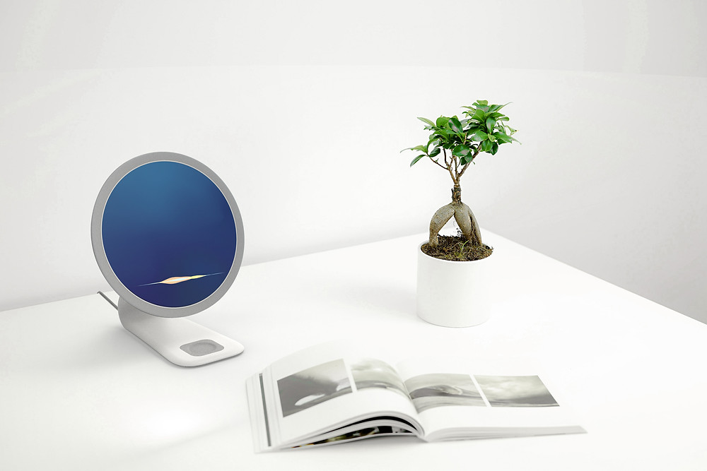 Cora AI companion on white desk with book and plant in white planter and white walls