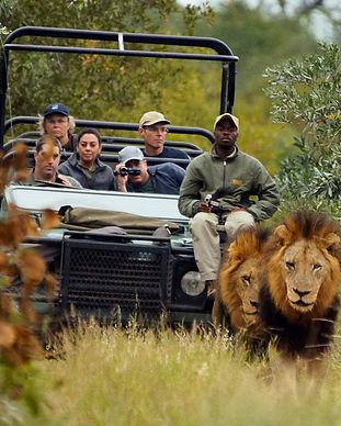 1-Kruger-national-park.jpg
