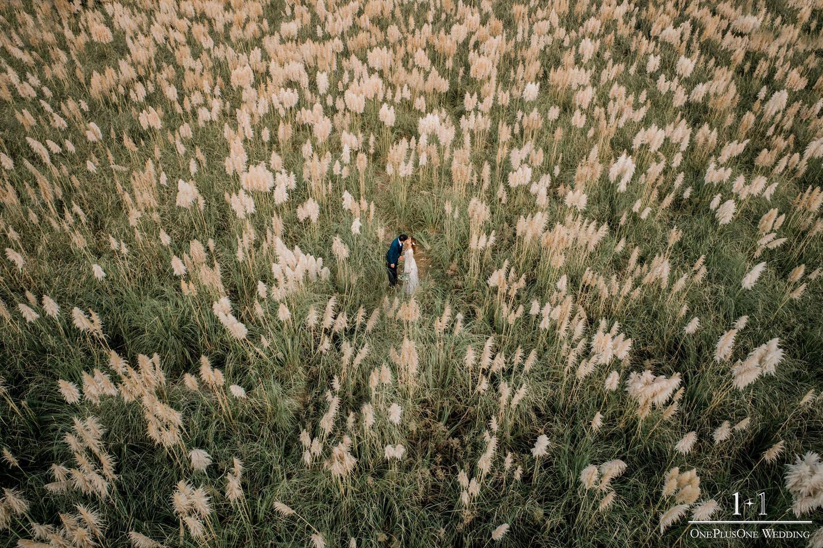 韓國濟州婚紗攝影-四月婚展優惠-39