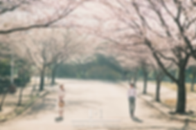 韓國濟州婚攝客人分享
