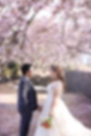 韓國濟州婚紗攝影客人評價