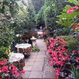 Old Thatch Fairy Gardens