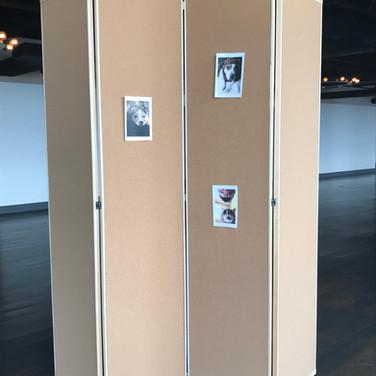 Wood Framed Bulletin Board