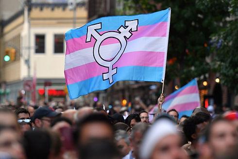 Fotografia: Uma bandeira do movimento trans levantada em meio a uma manifestação.