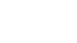 The Bridge Logo White.png