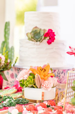 Bridal shower- Aline Bichara Party Decor