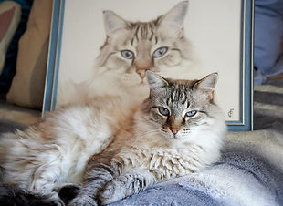 Kitara and Portrait