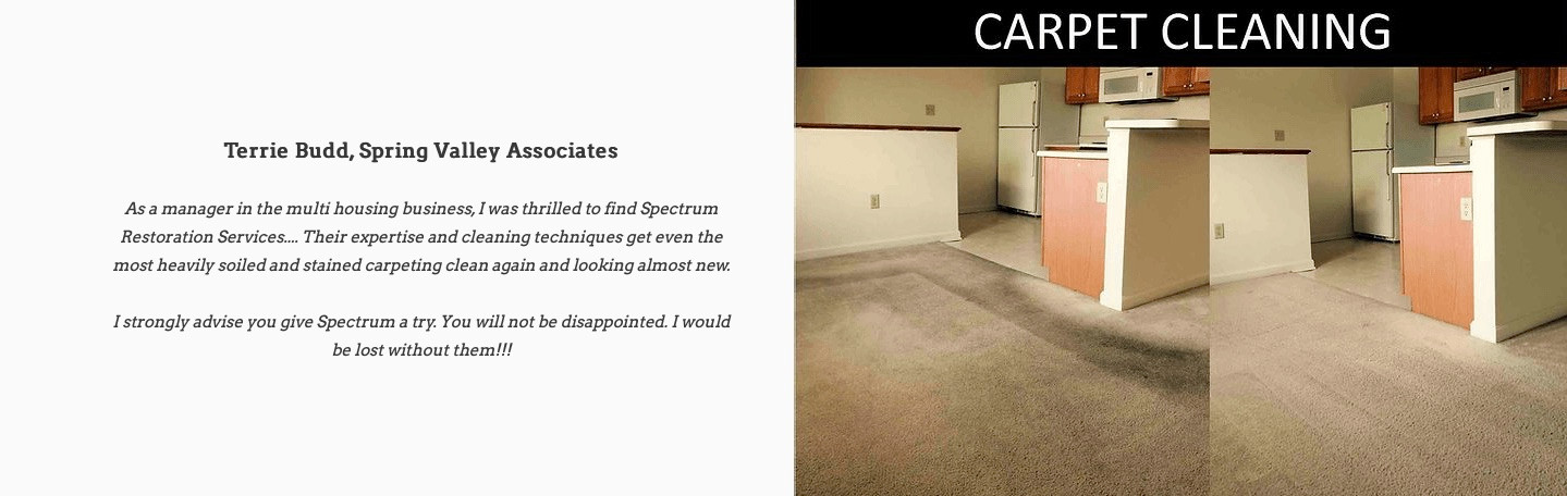 Carpet Cleaning Picture and positive rev