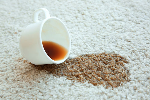 Cup of coffee spilled on white carpet, c