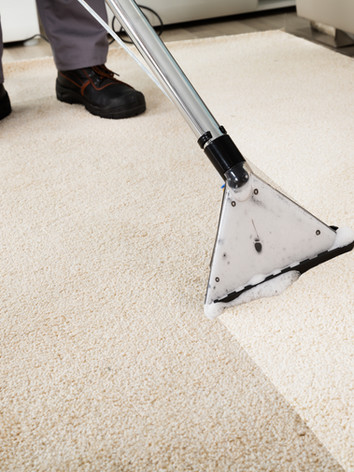Close-up Of A Person Cleaning Carpet Wit