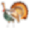 turkey-clipart.png