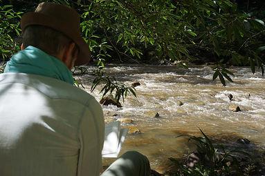 Lecture au bord de la rivière