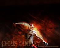 Chris Cooley art