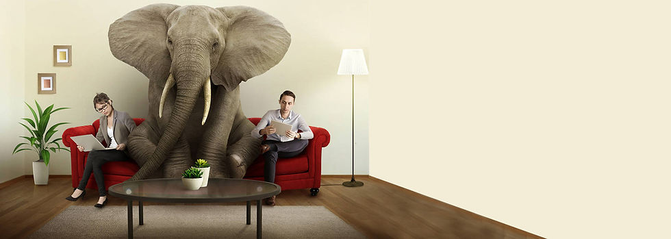 elefanten-i-rommet.jpg