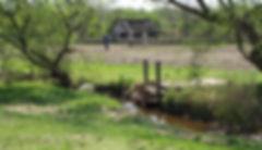Farming 0007.jpg