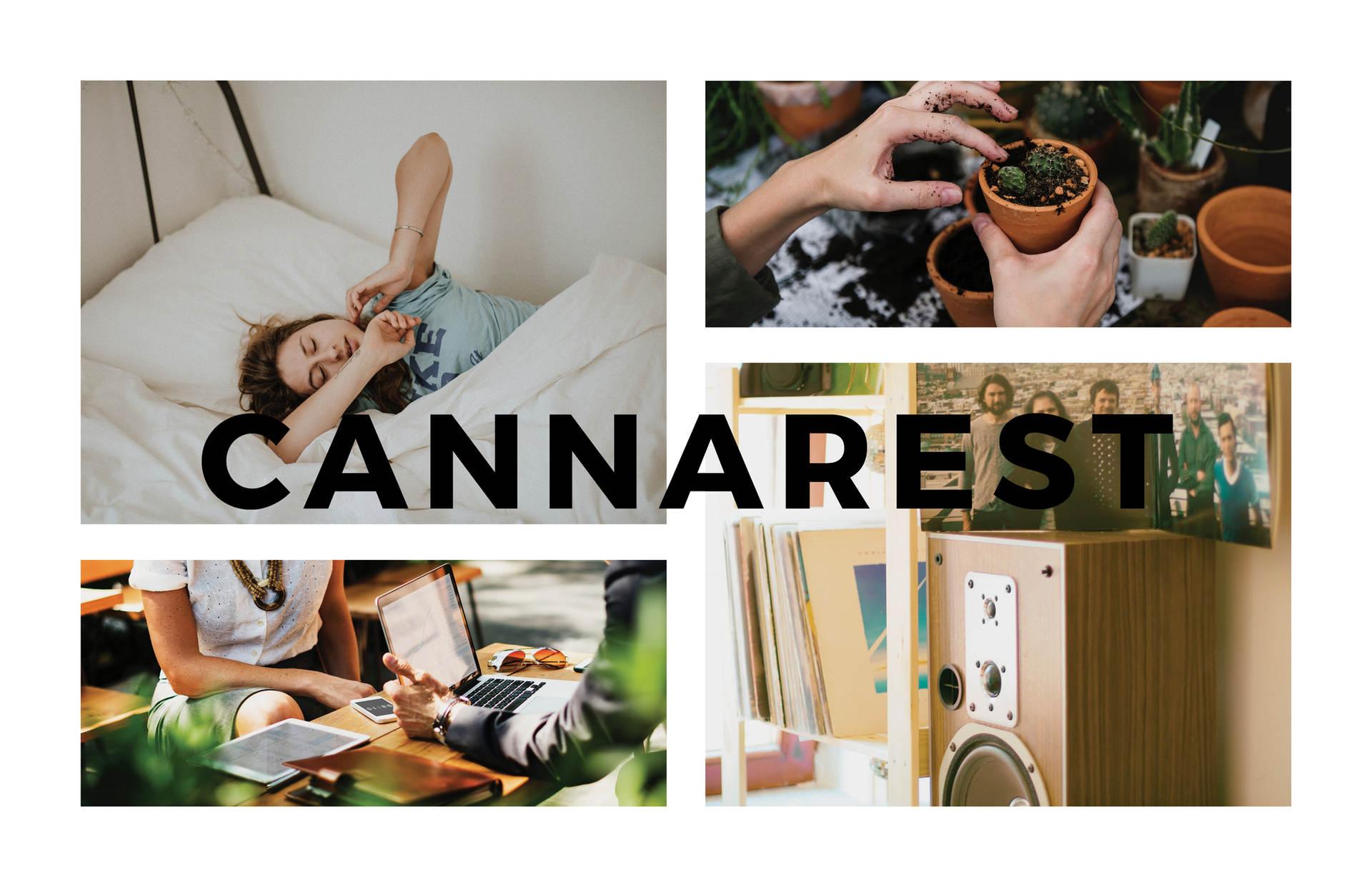 Cannarest - Matt Marchand-42.jpg