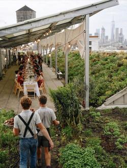 Urban Farm Organization Feel (2)