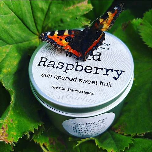 Wild Raspberry Sun Ripened Sweet Fruit Scented Soy Wax Tin Candle