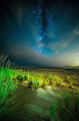 Stars over Cape Cod
