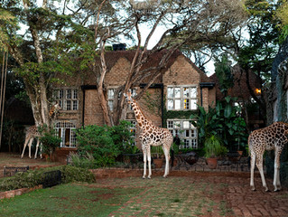 East Africa 2019- First Stop: Giraffe Manor, Kenya.