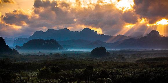 Jungle's of Southeast Asia