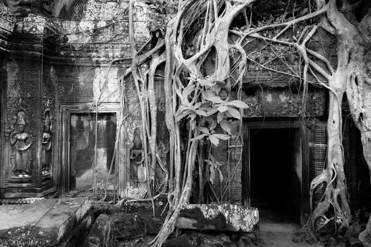 Mysteries of Angkor Wat.