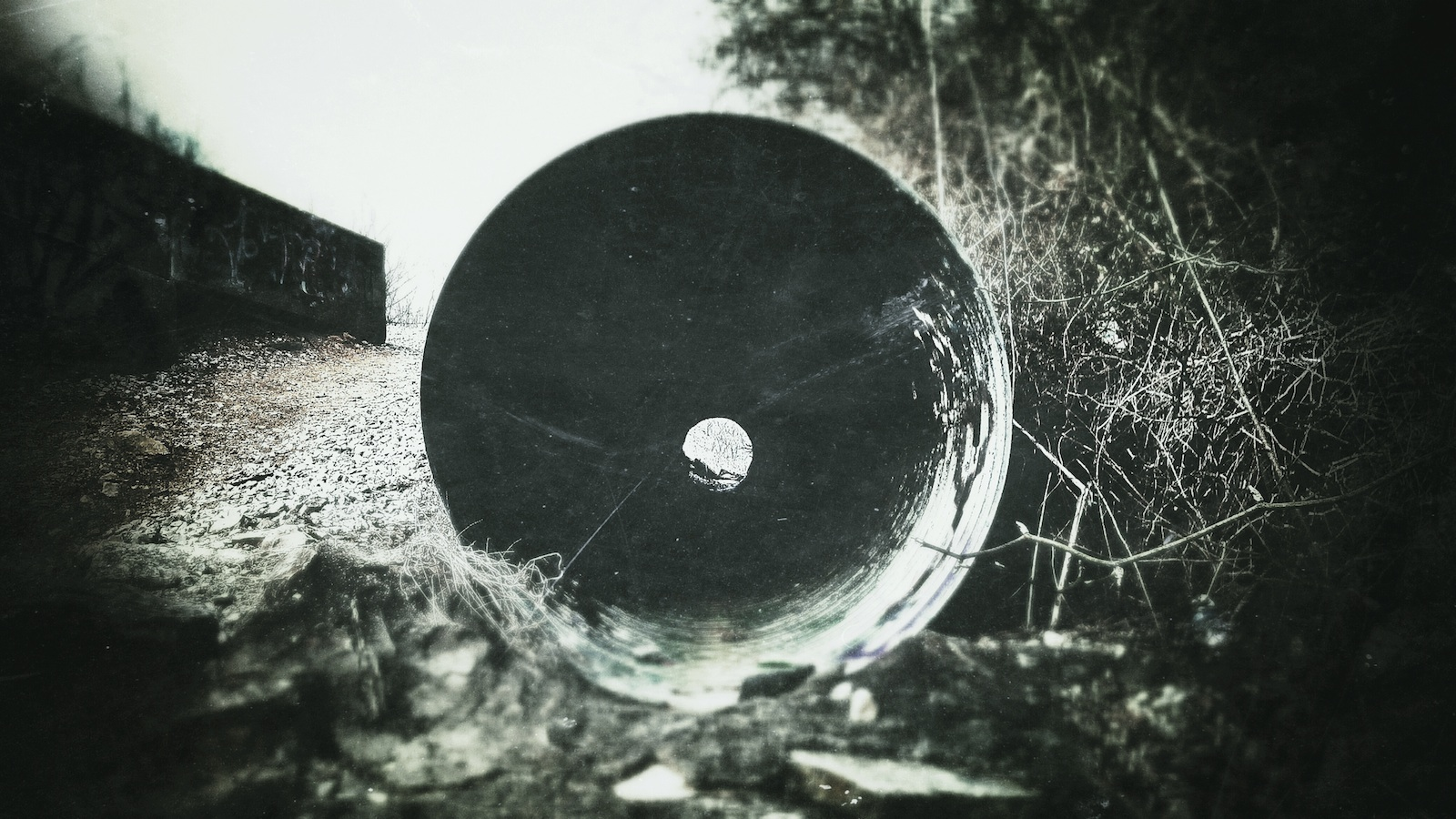 Looking Down A Barrel 2.jpg