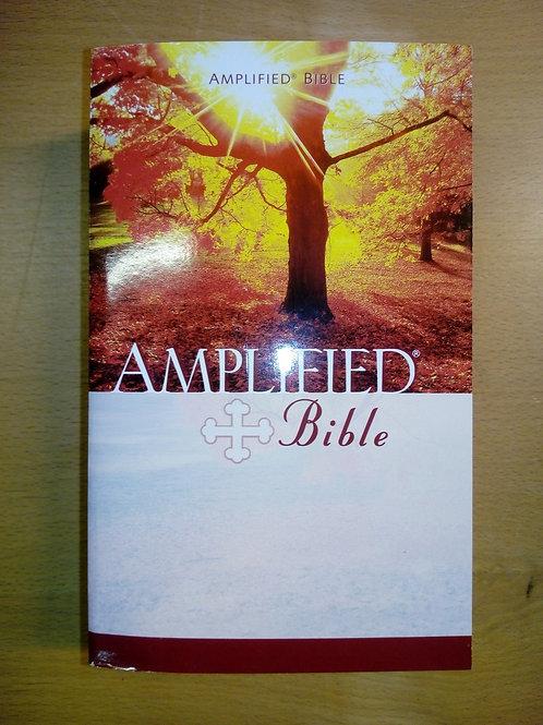 Engelska, Amplified Bible