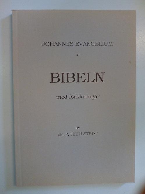 Fjellstedt Peter - Johannes evangelium med förklaring