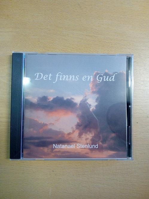 Det finns en Gud, Natanael Stenlund