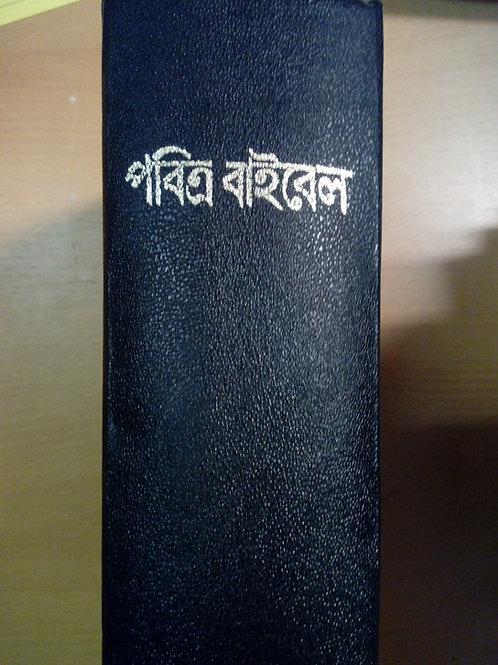 Bibel, Bengali