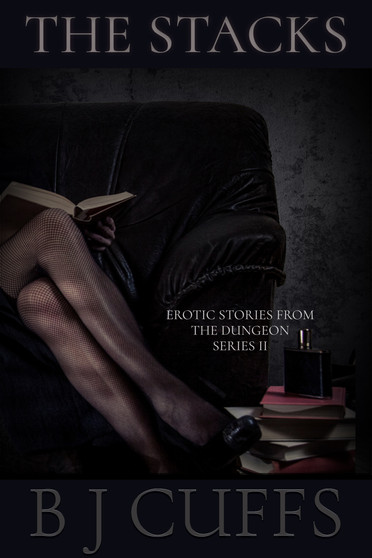 Erotic Stories From The Dungeon Series I