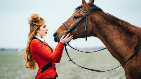Horses and Heroines - Books For Horse Lovers