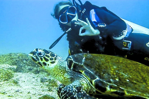 Isa with turtle