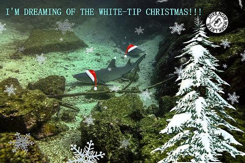 White-tip Christmas