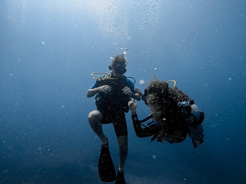 Divers at Catalina's