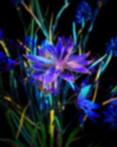 20200327_InfraredFlowers_V04_OctaneCamer