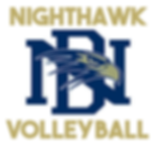 NIGHTHAWK VB LOGO GOLD.PNG