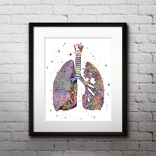 Human Lungs Vintage Anatomy Art Prints, Poster, watercolor, Painting, Art, Wall Art, Home Decor, Printables