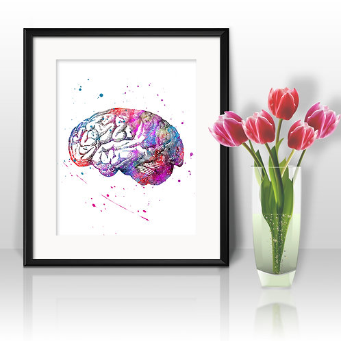 Human Brain Vintage Anatomy Art Prints, Poster, watercolor, Painting, Art, Wall Art, Home Decor, Printables