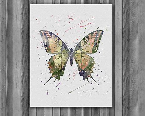 Butterfly Wall Art, Butterfly Print, Butterfly Poster, Butterfly Painting, Butterfly art, Butterfly home decor