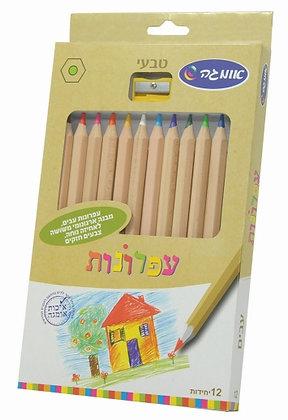 עפרונות צבעוניים משולשים עבים טבעי 12