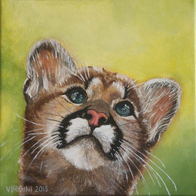 Cougar Cub in Amazement
