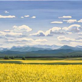 Beautiful Alberta Canola